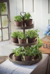Great indoor herb garden ideas for healthy life 12