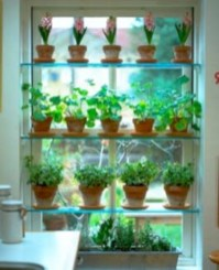 Great indoor herb garden ideas for healthy life 24