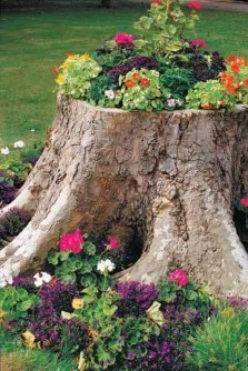 Best and amazing diy ideas for your garden decoration 32