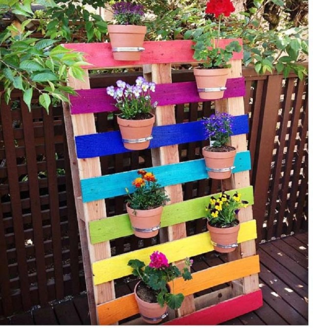 Colorful assortment flower plot planter