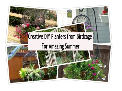 Creative diy planters from birdcage