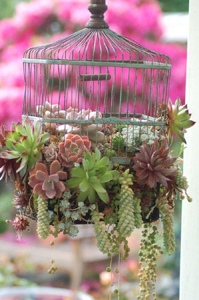 Low-key birdcage planter design