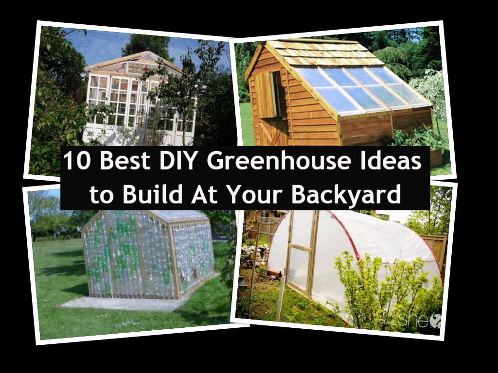 10 Best Diy Greenhouse Ideas To Build At Your Backyard Godiygocom