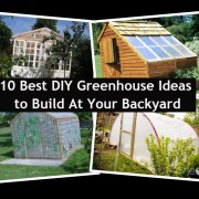 10 Best DIY Greenhouse Ideas to Build At Your Backyard.jpg