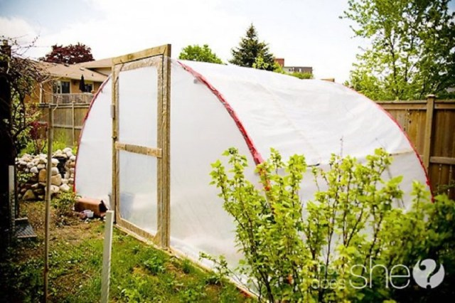 Trampoline-greenhouse