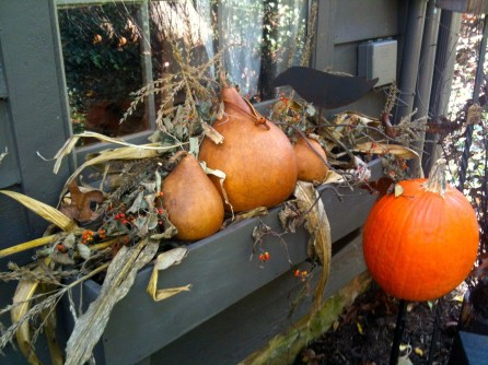 Cheap and easy fall window boxes ideas 19