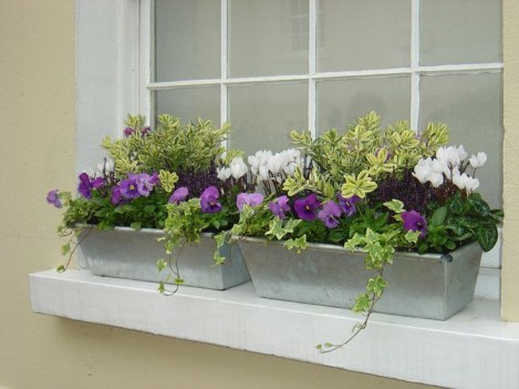 Cheap and easy fall window boxes ideas 21