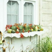 Cheap and easy fall window boxes ideas 26