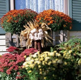 Cheap and easy fall window boxes ideas 27