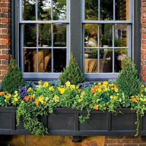 Cheap and easy fall window boxes ideas 29