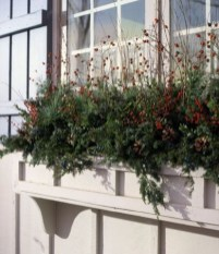 Cheap and easy fall window boxes ideas 33