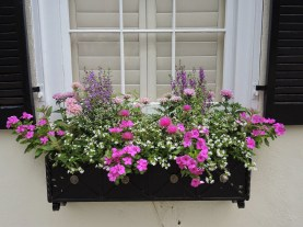 Cheap and easy fall window boxes ideas 42