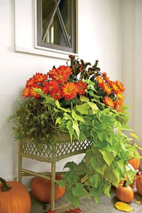 Cheap and easy fall window boxes ideas 54