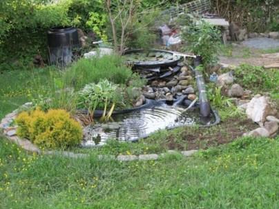 Creative ideas for a better backyard 17