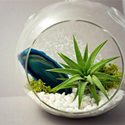 Simple ideas for adorable terrariums 01