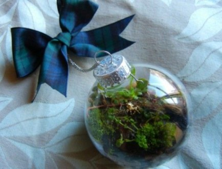 Simple ideas for adorable terrariums 02
