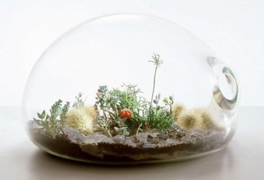 Simple ideas for adorable terrariums 14