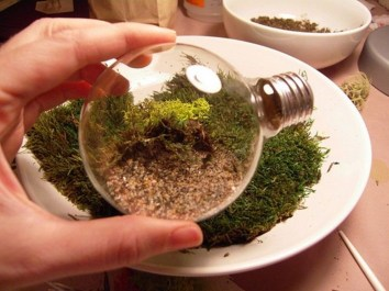 Simple ideas for adorable terrariums 18