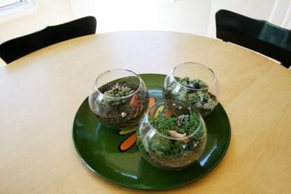 Simple ideas for adorable terrariums 27