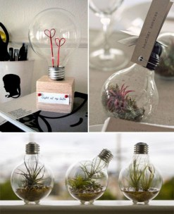 Simple ideas for adorable terrariums 31