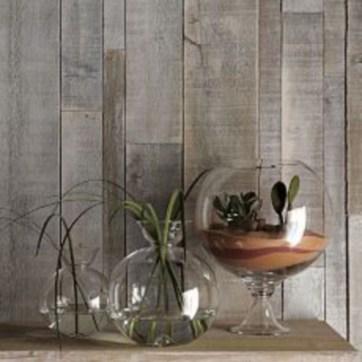 Simple ideas for adorable terrariums 34