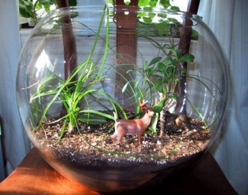 Simple ideas for adorable terrariums 35