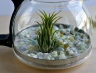 Simple ideas for adorable terrariums 36