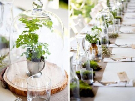 Simple ideas for adorable terrariums 40