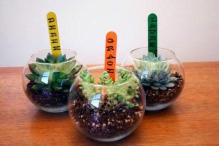 Simple ideas for adorable terrariums 43