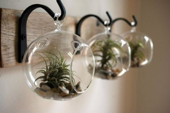 Simple ideas for adorable terrariums 46