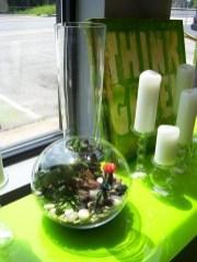 Creative diy fairy garden ideas to try 08