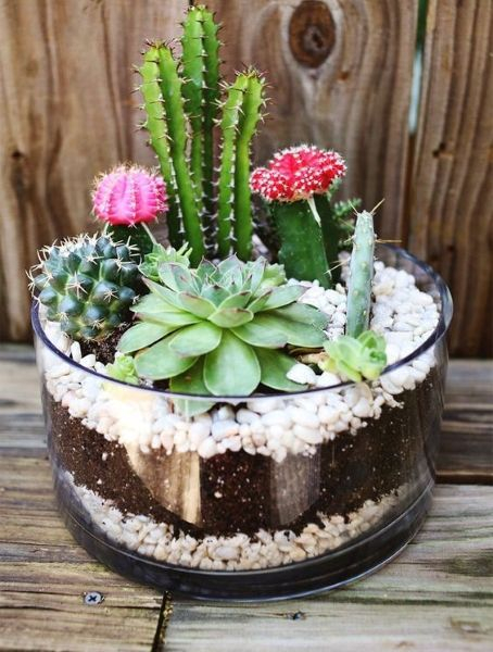 Creative diy fairy garden ideas to try 18