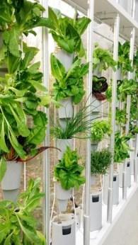 Inspiring vertical garden ideas for your small space 15
