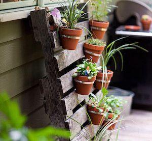 Inspiring vertical garden ideas for your small space 16