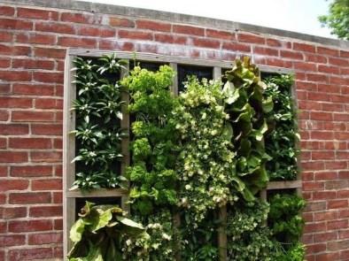 Inspiring vertical garden ideas for your small space 17