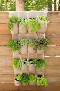 Inspiring vertical garden ideas for your small space 22