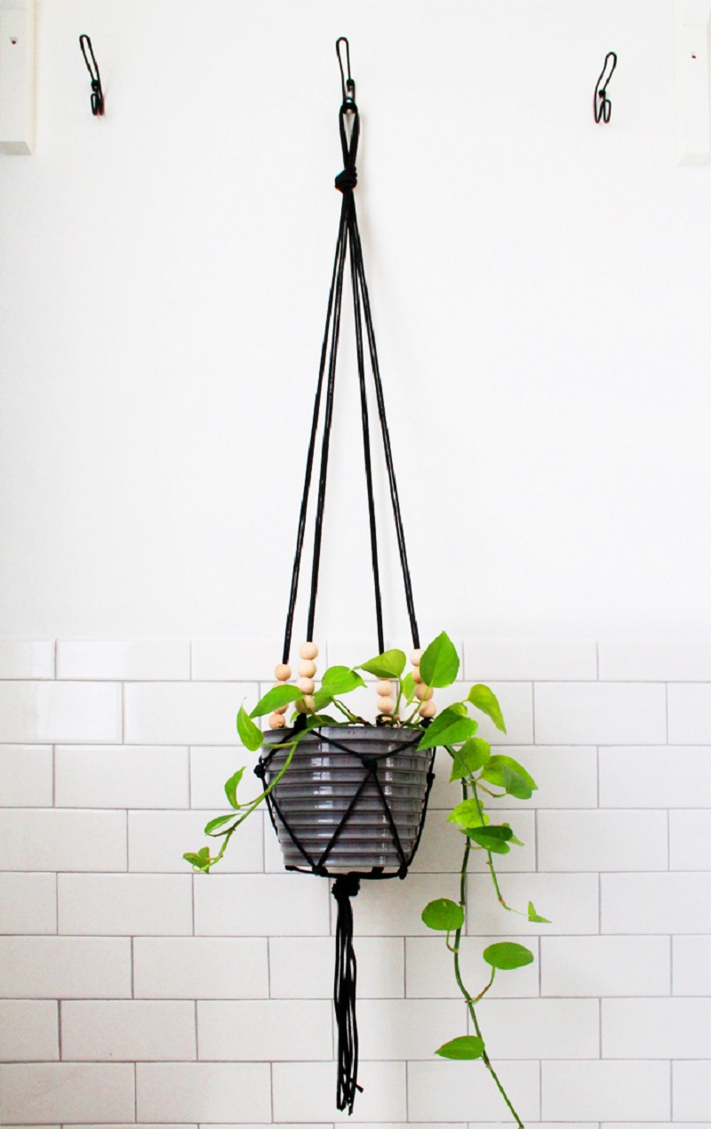 Modern looking plant holder