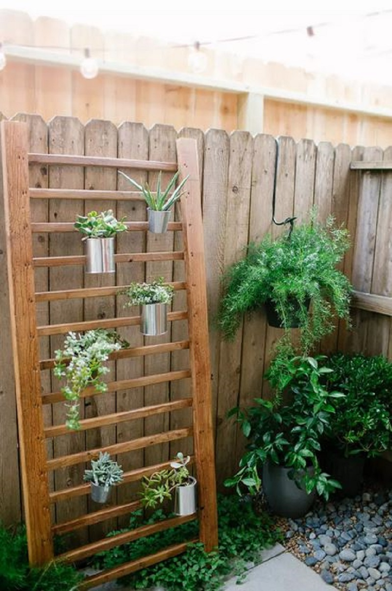 Diy outdoor succulent wall