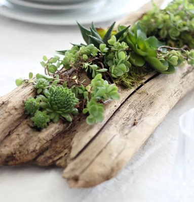 Driftwood centerpiece Pretty Fresh DIY Planters You Can Create From Scratch Or Recycled Materials