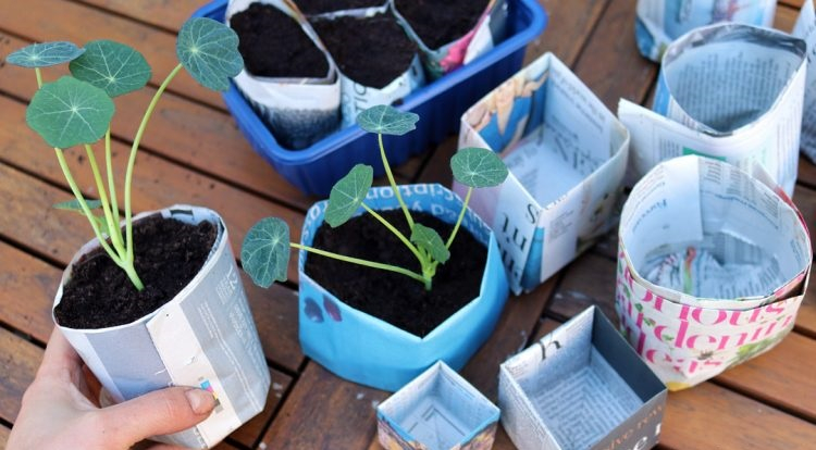 Newspaper plant pots Gardening Projects To Keep You Busy And Get You Through In The Colder Months This Year