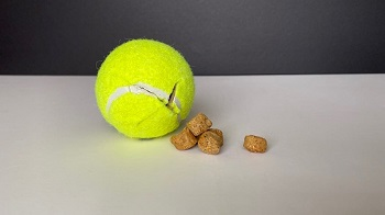 4 Cool DIY Ideas To Make More Durable Chewing Toys For Your Lovely Dogs