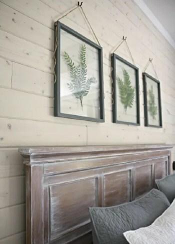 Framing natural leaves
