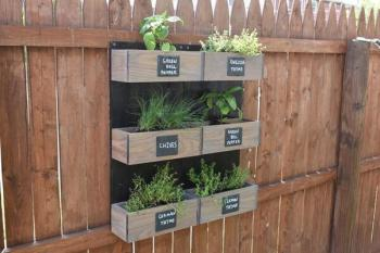 Mounted wall of herb planter boxes