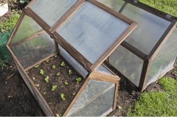 Diy traditional greenhouse