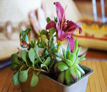 Mini cake pan floral décor Smart-Upgrade Repurposing Ideas Of Your Old Baking Pan