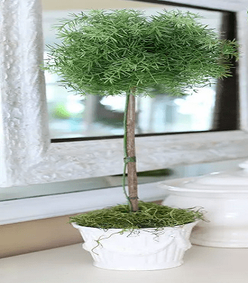 Diy fake topiary DIY Fake Plants That Easy To Follow For Home Decoration