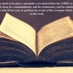 2 Chronicles 34: 31 And the king stood in his place, and made a covenant before the LORD, to walk after the LORD, and to keep his commandments, and his testimonies, and his statutes, with all his heart, and with all his soul, to perform the words of the covenant which are written in this book.