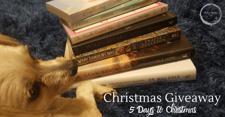 Godly Woman 911 Christmas Giveaway