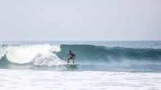 Surfing in India, 2014