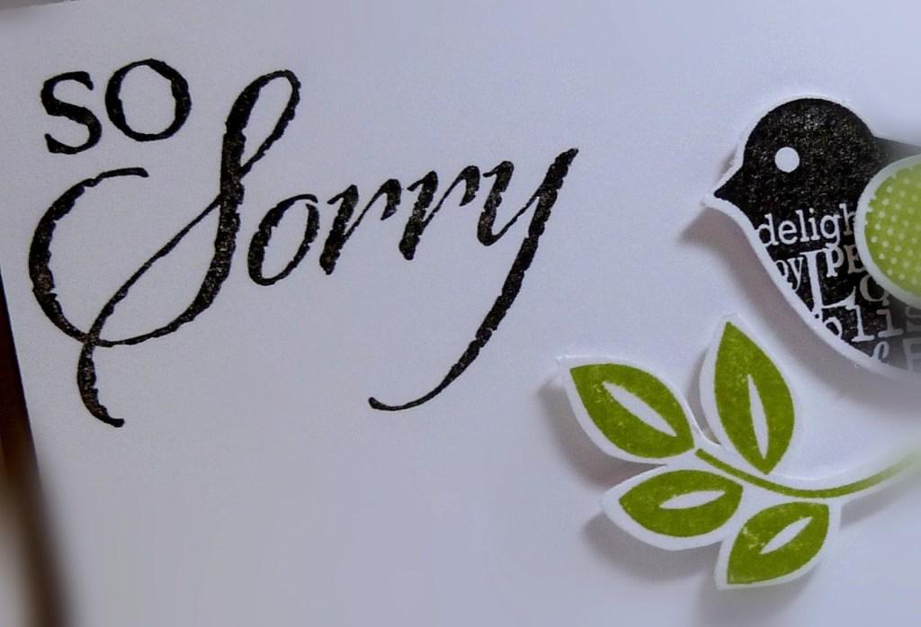 sorry photos